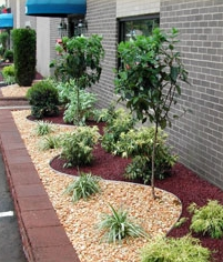 Commercial property displaying a natural stone wall and flowers and landscaping plants to compliment the walkway